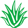 مرجع گیاهان دارویی ایران